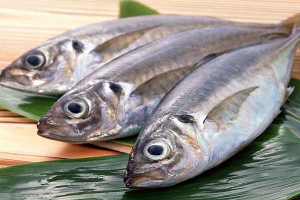 Cá biển là món ăn được yêu thích