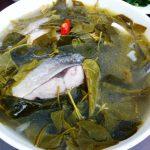 Món cá măng lá giang ngon khoái khẩu