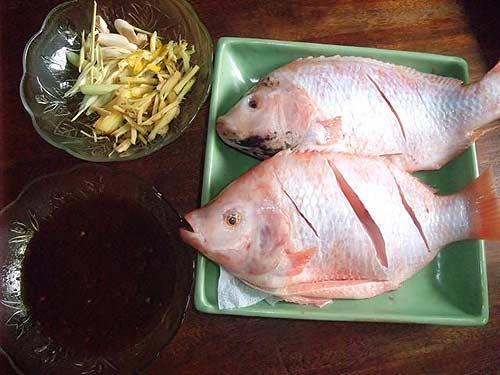 Chọn cá Điêu hồng to béo, da sáng nhé