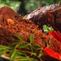 Món cá kho làng Vũ Đại rất ngon
