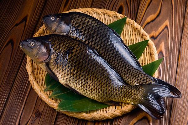 Nguyên liệu để chế biến món cá diếc kho tương cực ngon