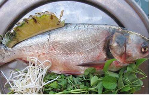 Chuẩn bị nguyên liệu làm món cá mè luộc cực ngon
