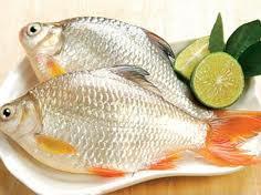 Món ăn chế biến từ cá tươi sẽ ngon hơn rất nhiều