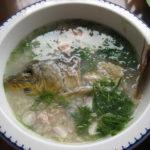 Bật mí những món ăn ngon chế biến từ cá chép cực tốt cho bà bầu
