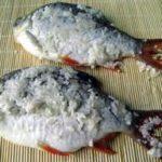 Hướng dẫn bảo quản cá tươi