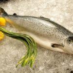 Bí quyết lựa chọn và bảo quản cá hồi tươi ngon nhất