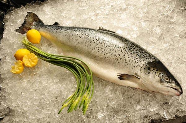 Lựa chọn cá hồi tươi ngon cực đơn giản