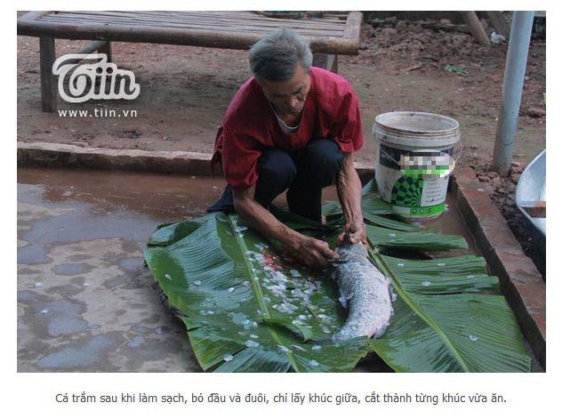 Nghệ Nhân Trần Bá Sản của công ty Đặc Sản Việt Nam - DASAVINA đang sơ chế cá