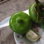 Cá kho bần – món ăn dân dã vùng sông nước Cửu Long