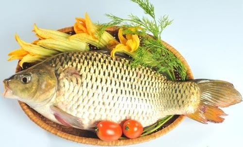 Con cá chép đồng quê tươi ngon
