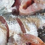 Bí quyết vàng chế biến các món cá